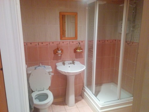 Small downstairs toilet shower are my ideas gonna work for Downstairs bathroom ideas