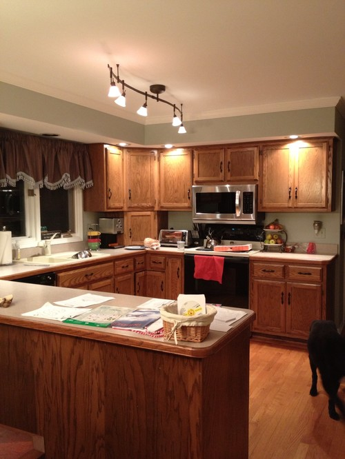 Remodeling Our Kitchen Help