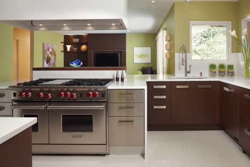 Contemporary kitchen by ew kitchens extraordinary works for Kitchen set environment variables