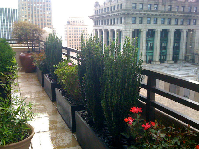 nyc roof garden terrace deck container plants fiberglass pots black stones contemporary. Black Bedroom Furniture Sets. Home Design Ideas