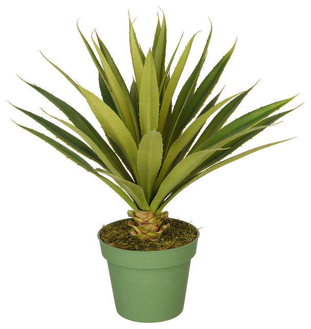 Artificial Large Spike Yucca Plant In Large Nursery Pot