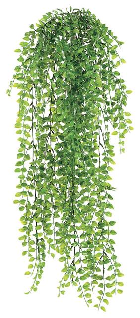 Silk Plants Direct Pea Leaf Hanging Bush Pack Of 12