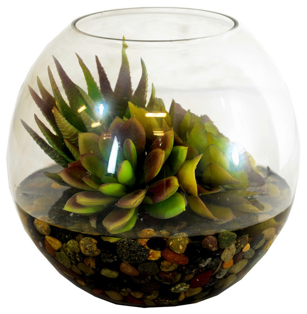 10 mixed succulents with pebbles in glass bowl 2975 for Decor 52 fan celano ma dw