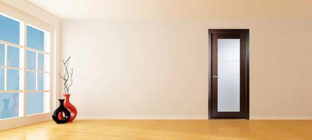 Maximum 209 Modern Interior Door Wenge Finish Modern