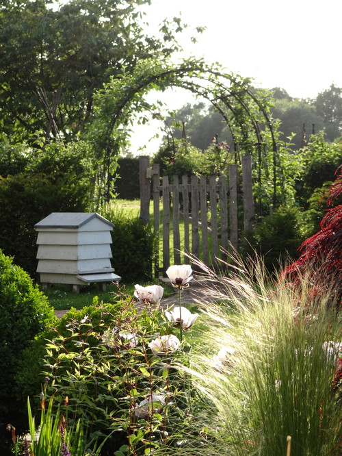 Here's a great example of a smaller beekeeping operation. With a single beehive house placed next to shrubbery at the edge of a garden, it's a sweet location for bees to conjure up honey.