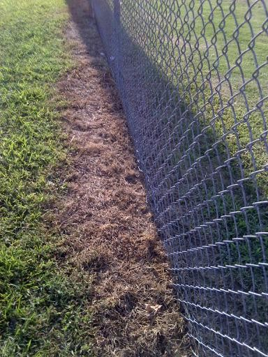 Landscaping Question Creating Dead Zone Along Fencing