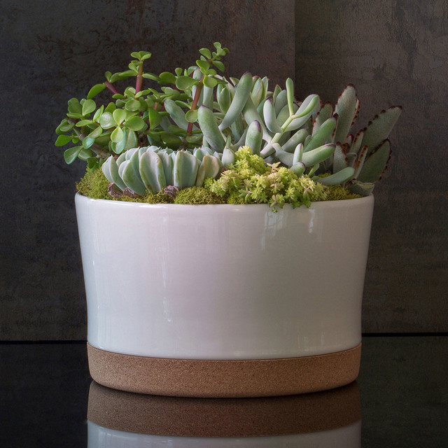 Acdc Aesthetic Content Home Decor Modern Indoor Pots