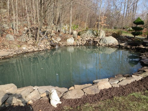 Backyard ponds water features water gardens for Backyard pond installation