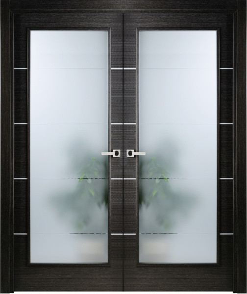 Modern interior double door italian black apricot with - Contemporary glass doors interior ...
