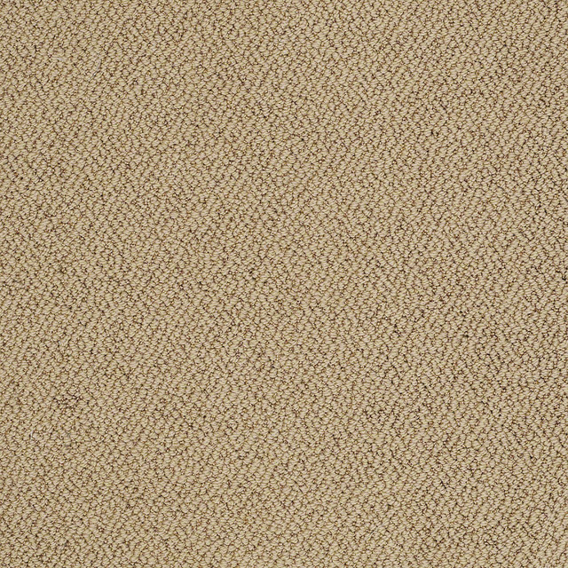 merino contemporary area rugs other by shaw floors