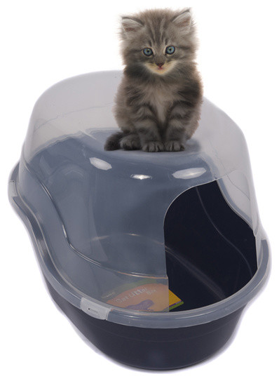 Enclosed side entry litter box blue contemporary litter boxes and covers by appearances - Modern kitty litter box ...