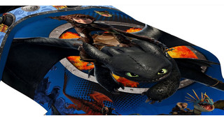 How to Train Your Dragon Twin Comforter Flyers Bedding - Contemporary