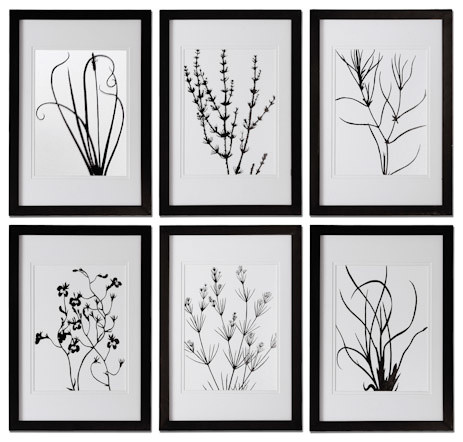 black and white leaves framed art traditional artwork by