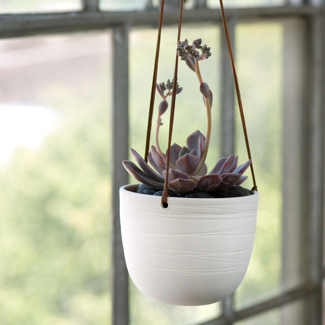 Scribble Hanging Planter Traditional Indoor Pots And