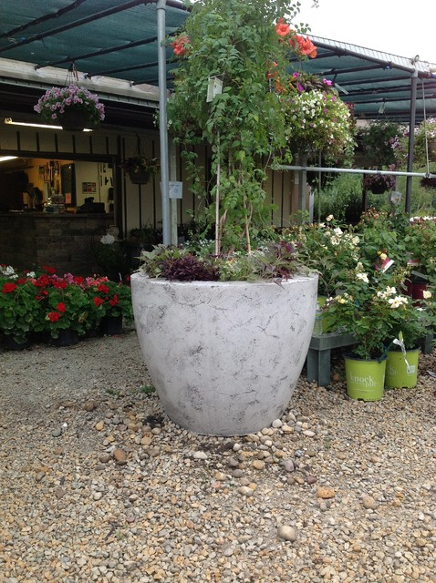 Large Concrete Drum Planters Modern Indoor Pots And Planters Chicago By Elemental
