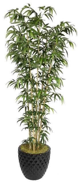 "Laura Ashley 78"" Tall Natural Bamboo Tree in 16"" Fiberstone Planter ..."