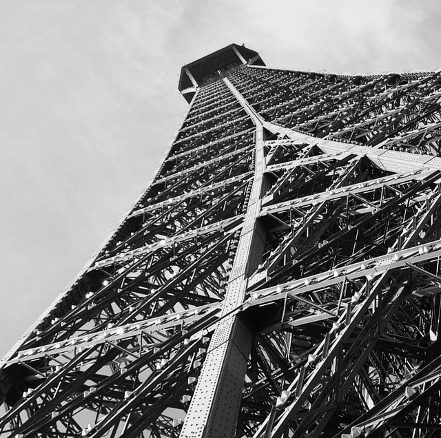 Eiffel tower grayscale wall mural contemporary wall for Eiffel tower wall mural ikea