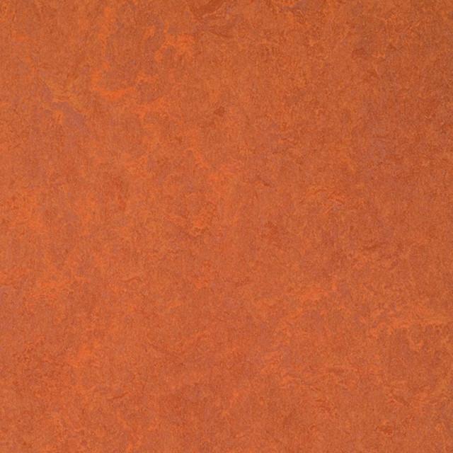 forbo marmoleum click red copper sample eclectic. Black Bedroom Furniture Sets. Home Design Ideas