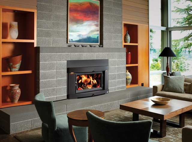 Avalon Perfect Fit Plus Wood Insert Modern Indoor Fireplaces Seattle