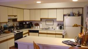 can this type of kitchen cabinet be painted painting kitchen cabinets for a new look kitchen