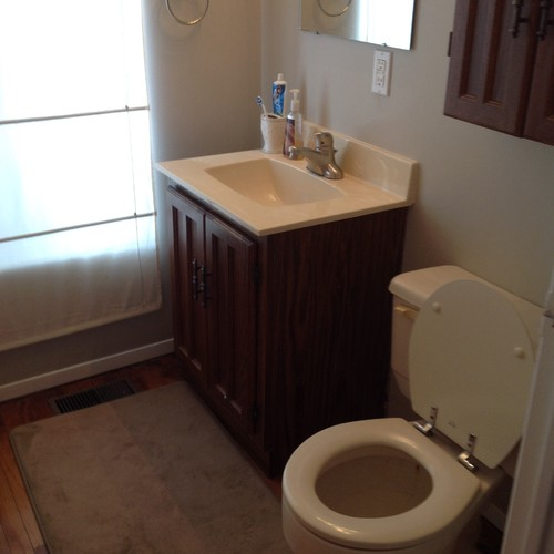 Help my boring two piece bathroom for Bathroom design help