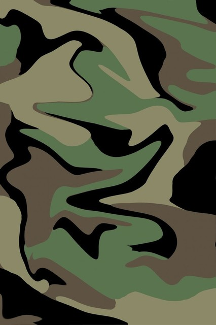 Camo swirl effect wall mural 18 inches h contemporary for Camo mural wall