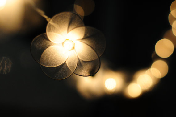 Twenty Flowers Handmade In White Color String Light By cottonlight - Contemporary - Outdoor Rope ...