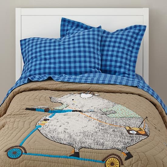 9 Unexpected Cool Color Schemes for Boys Rooms  Houzz