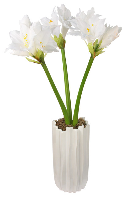 Amaryllis white silk floral arrangement with white for Vase amaryllis