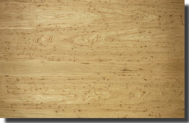 Chestnut wormy other metro by oakwood veneer for Oakwood veneers
