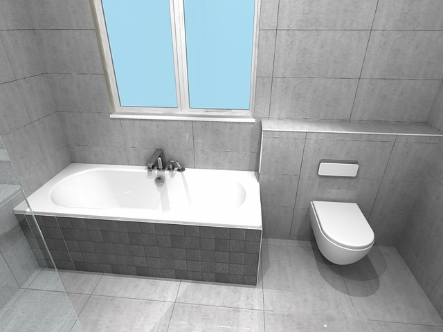 Cad bathroom designs - Cad bathroom design ...