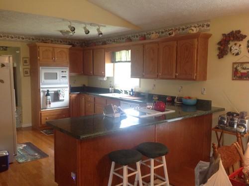 Complete Kitchen Remodel Help Please