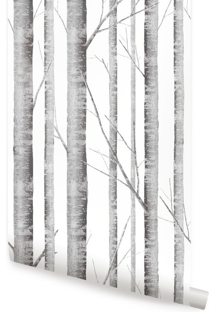 Birch tree wallpaper peel and stick gray transitional - Birch tree wallpaper peel and stick ...