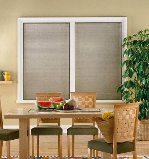 Blindsgalore 3 4 Inch Premiere Single Cell Cellular Shade Contemporary Cellular Shades