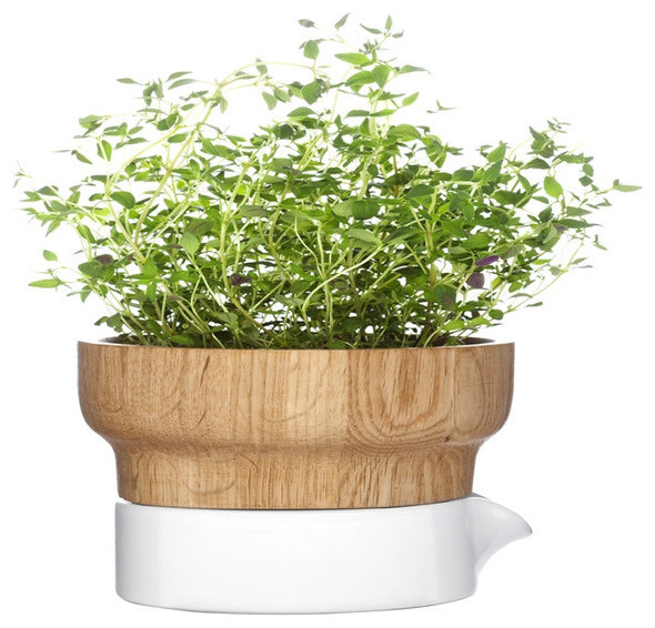 fix herb pot contemporary indoor pots and planters