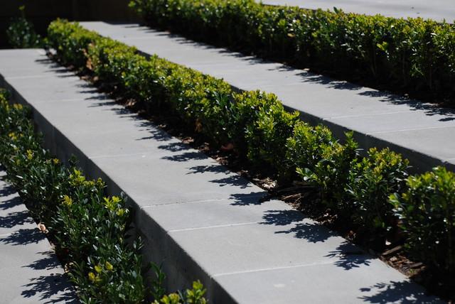 andrew renn design beautiful gardens of melbourne laminex australia other metro by laminex australia