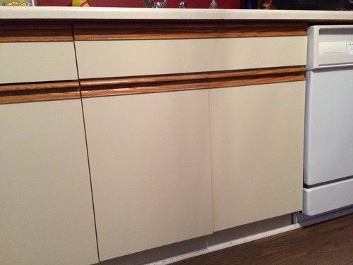 Kitchen cabinet doors for Kitchen cabinets without doors