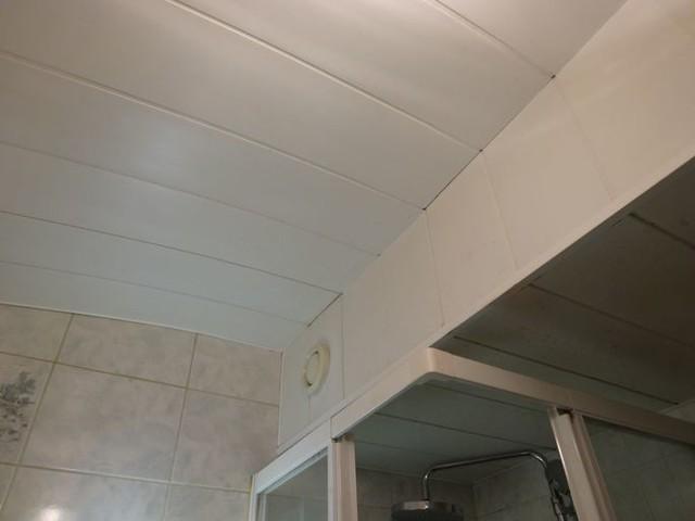 Le plafond de la petite salle d 39 eau - Petite salle d eau design ...