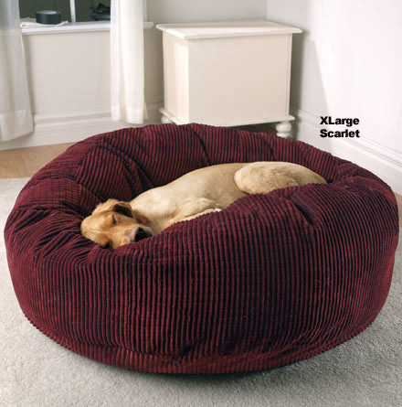 Bean Bag Beds For Dogs And Cats Yes No Dog About It Blog