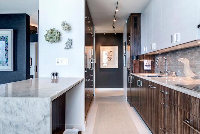 Chicago North Shore Condo Contemporary Kitchen