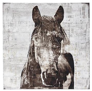 Winter Stallion Samantha Carlisle Modern Artwork