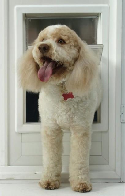 Ideal Multi Flex Storm Door Dog Door Multicolor MFM