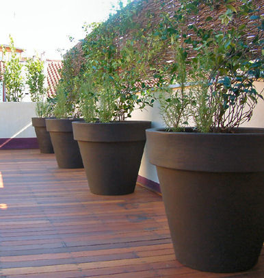 Lovely Garden Design With Ceramic Garden Pot Large Products On Houzz With Small  Vegetable Garden Design From