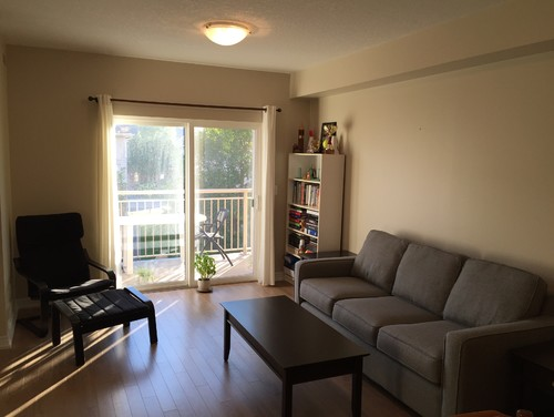 new place please help me decorate my condo living room