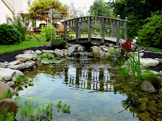 Garden ponds goldfish ponds koi ponds monroe county for Koi ponds and gardens