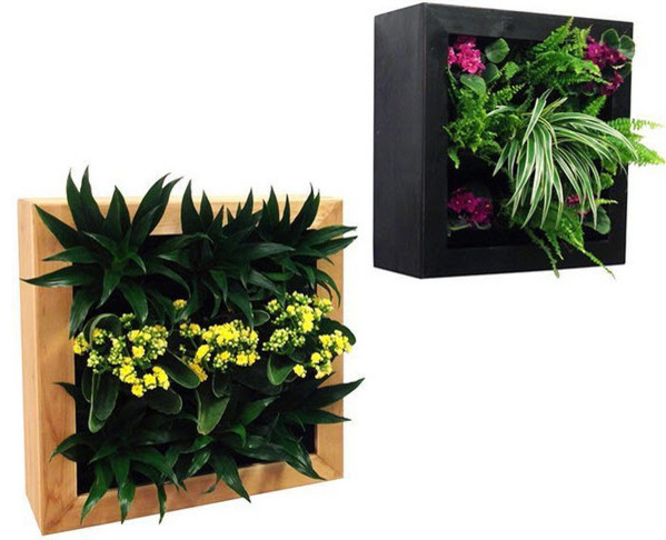 gsky retail living wall planter vertical gardens traditional indoor pots and planters. Black Bedroom Furniture Sets. Home Design Ideas