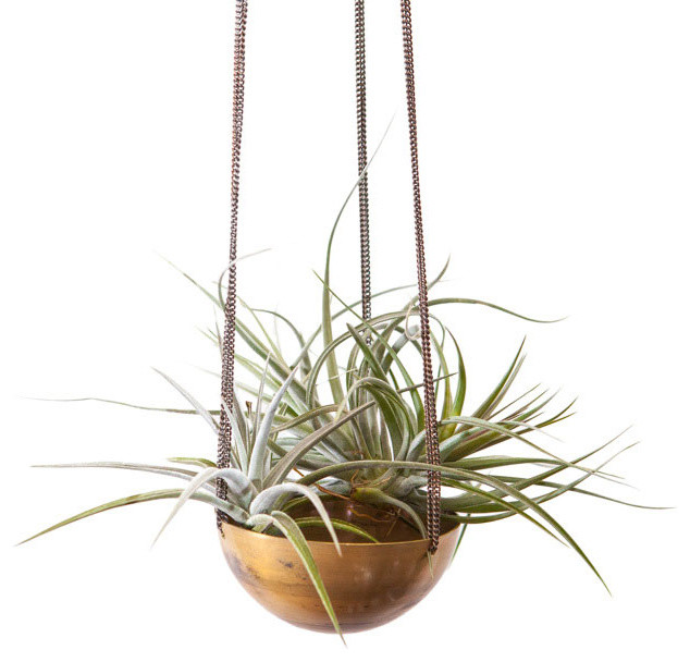 Gold Medal Hanging Planter Contemporary Indoor Pots