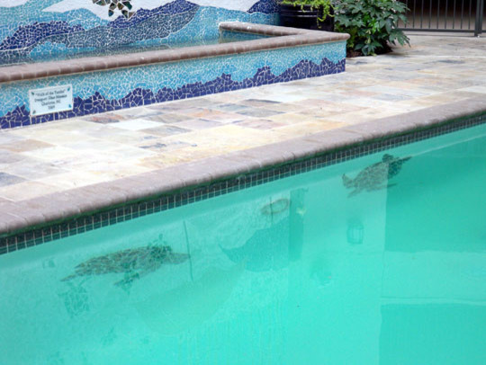 Mosaic Turtle For Swimming Pool