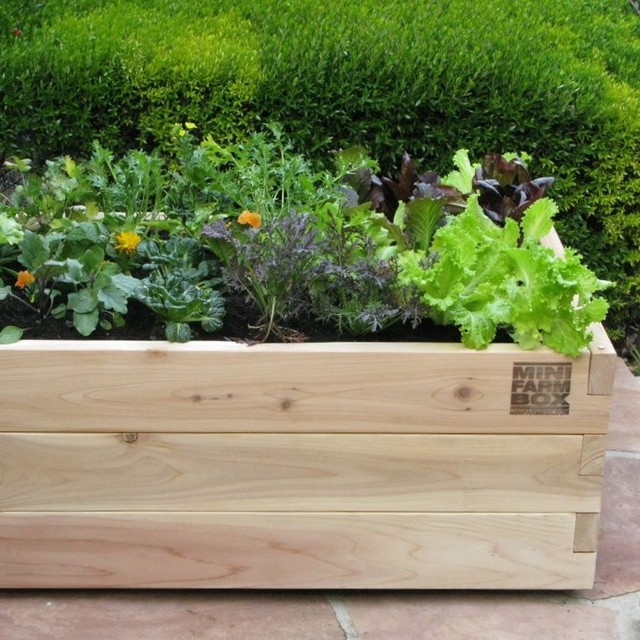 Rolling Farm Box In Designer Pots Eclectic Outdoor Pots And Planters
