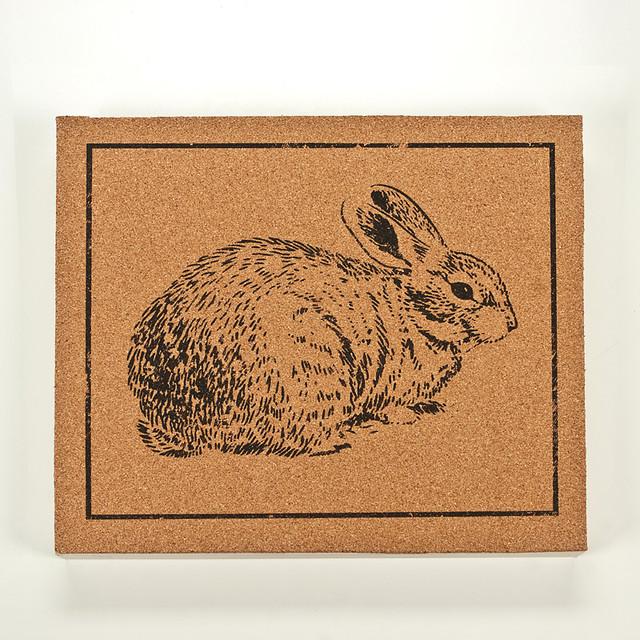 Panel art small cork board bunny 2 modern novelty for Modern cork board